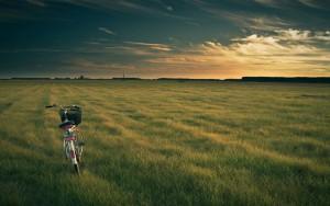 Landscape-Photography1